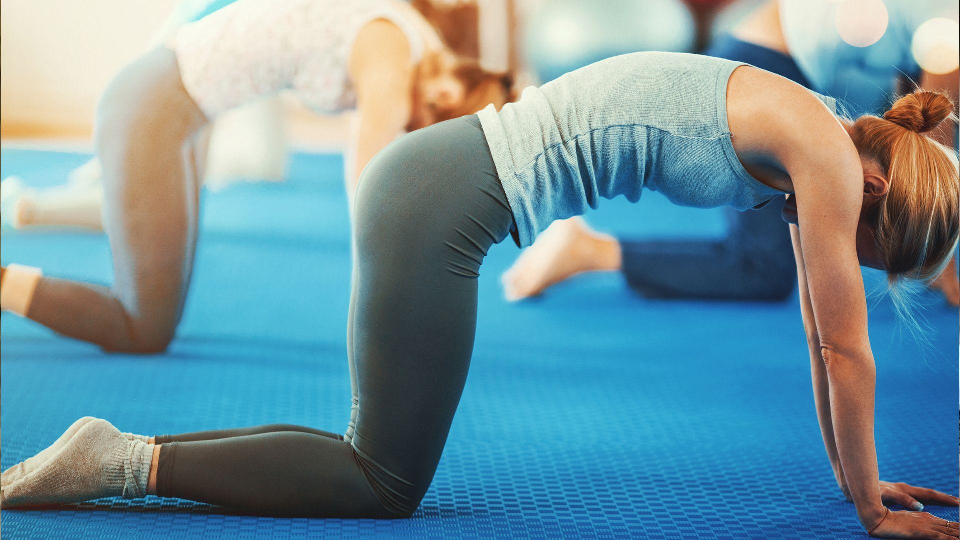 history of yoga book