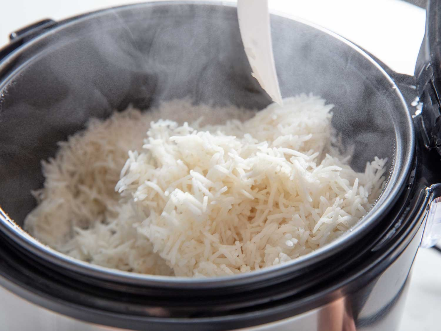 insignia rice cooker