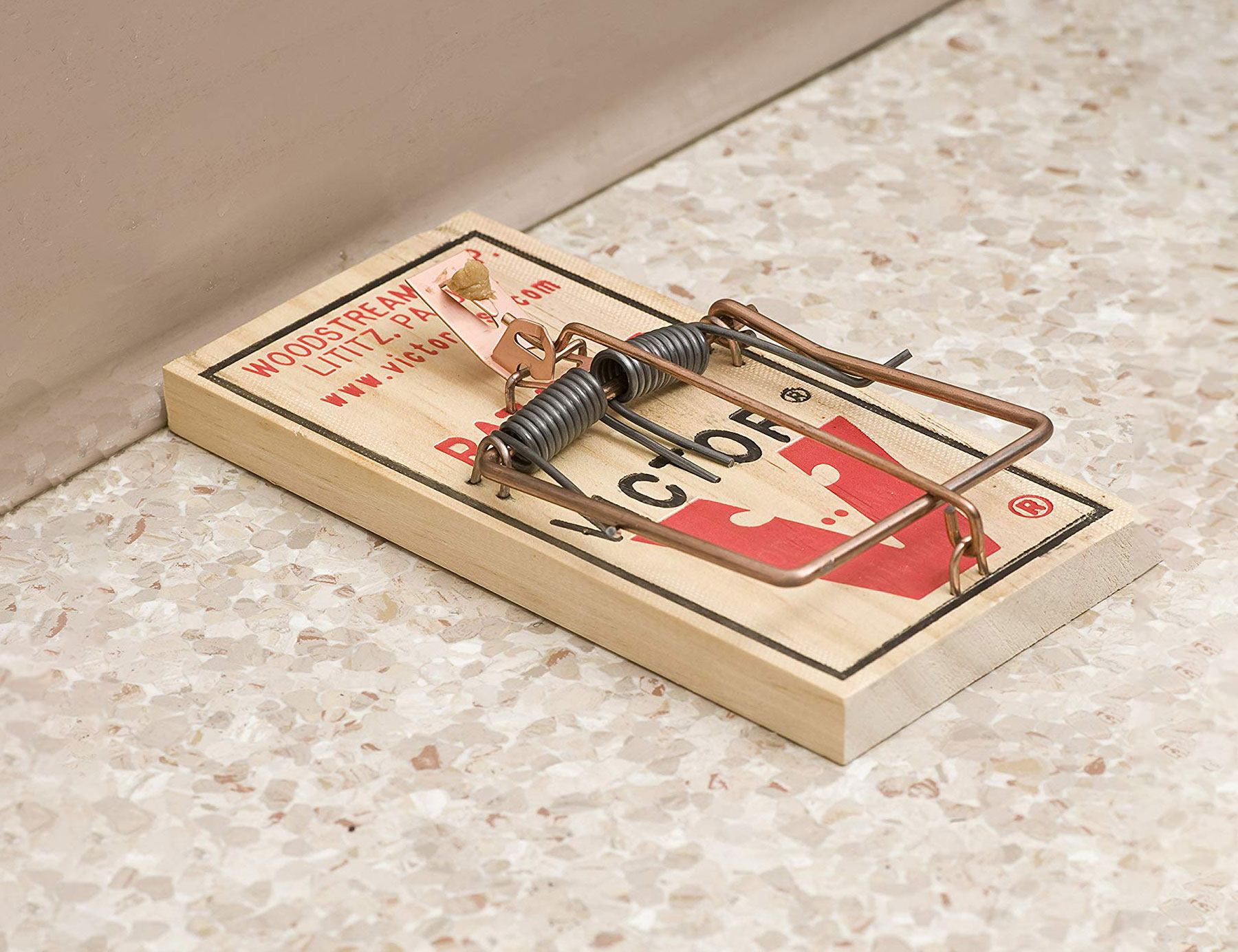 rat trap walmart